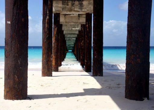 Barbados beach in the caribbean