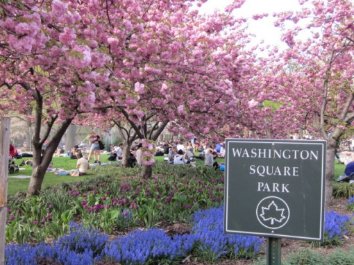 Snapshot of Washington Square Park taken in April