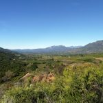 Plan a Wonderful Weekend in Ojai, California
