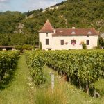 Cahors_Chateau wine in southern France