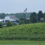 Spirits Sparkle at Huber's Orchard and Winery