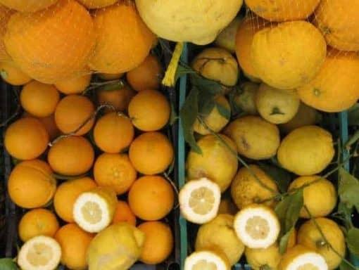 Italian lemons. (photo by Tui Snider)
