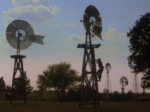 Windmill Farm (photo by Tui Snider)