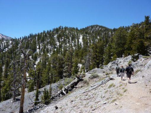 Bristlecone Trail, Las Vegas, NV