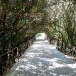 Photo Friday:  Covered Walkway in Siracusa, Sicily