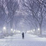 New York's Central Park in Winter