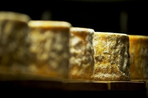 vermont cheese photo
