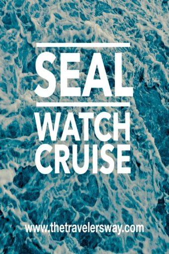 seal watch cruise