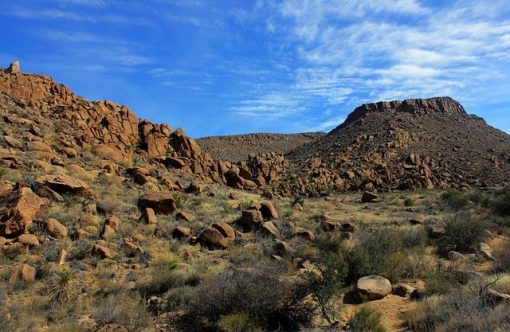 big-bend-national-park-347402_640