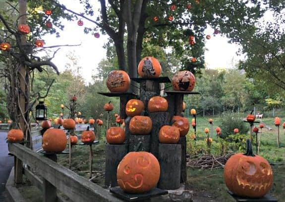 Halloween at Roger Williams Park
