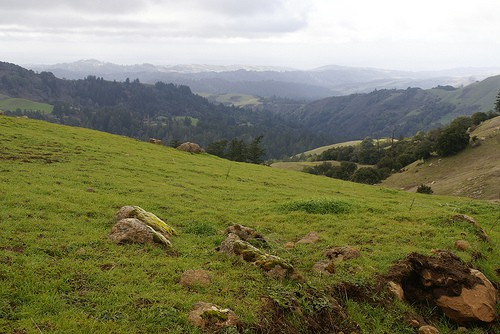 Russian Ridge Preserve photo