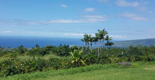 View from Pele Plantations Farm