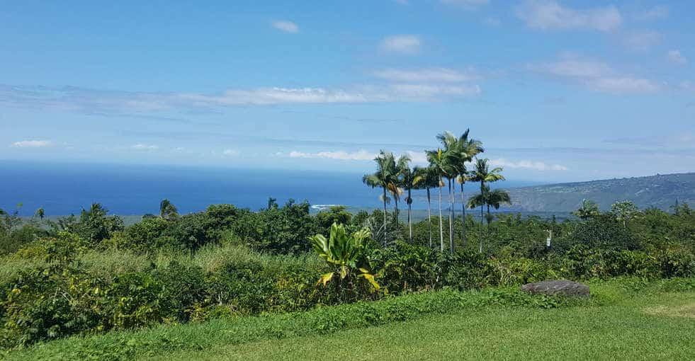 FREE Private Kona Coffee Farm Tours, Hawaii