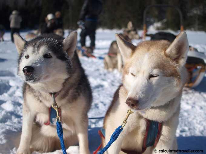 Outdoor Winter Adventure Fun in Canada