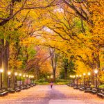 7 Best New York City Spots for Nature Lovers